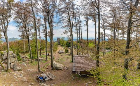 Fotografieren am Hirschenstein im Bayerischen Wald |Fotostyle Schindler | Landschaftsfotos