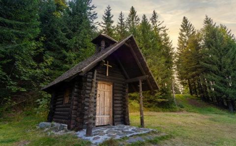 Fotograf Straubing | Wandern auf den Hohen Bogen im Bayerischen Wald
