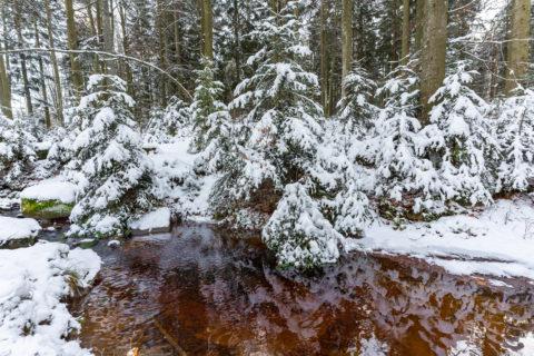 Landschaftsfotos |Bayerischer Wald am Schopf und Grandsberg |Fotostyle Schindler