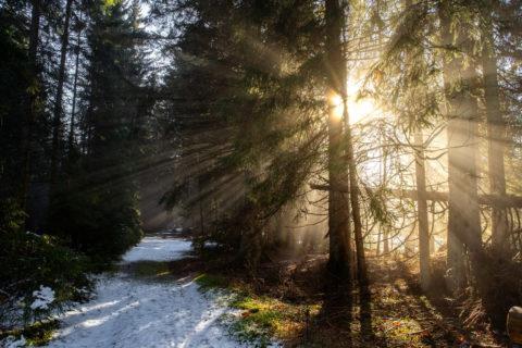 Landschaftsfotos |Bayerischer Wald Rachel |Fotostyle Schindler